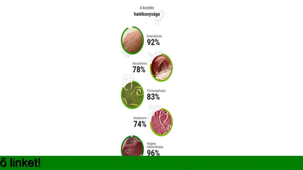 helminthiasis és bélprotozisek vizsgálata