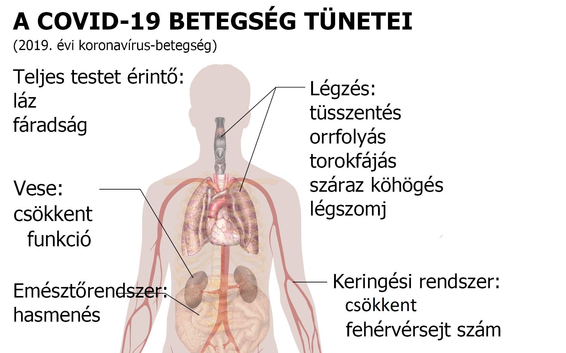 helminth tünetek