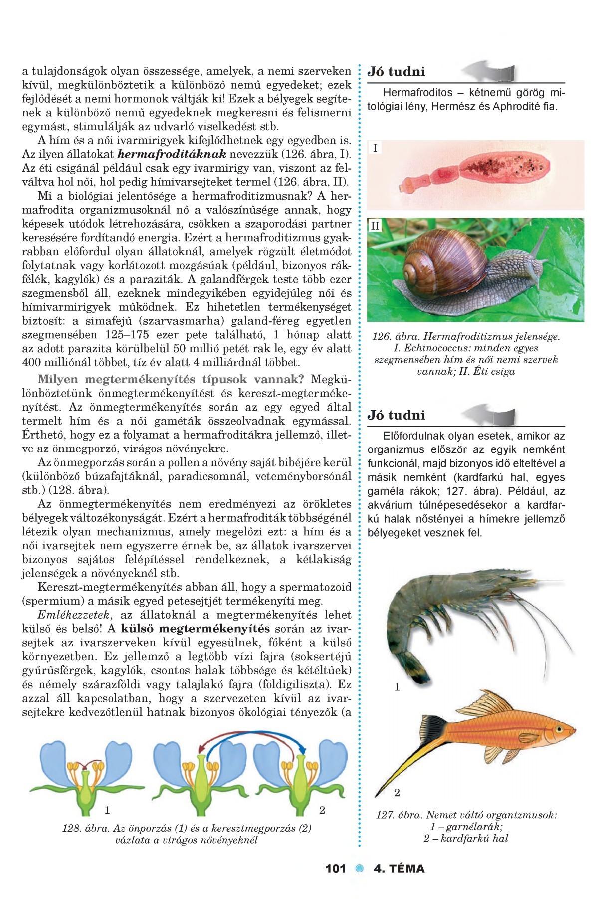 szimbiózis parazita és