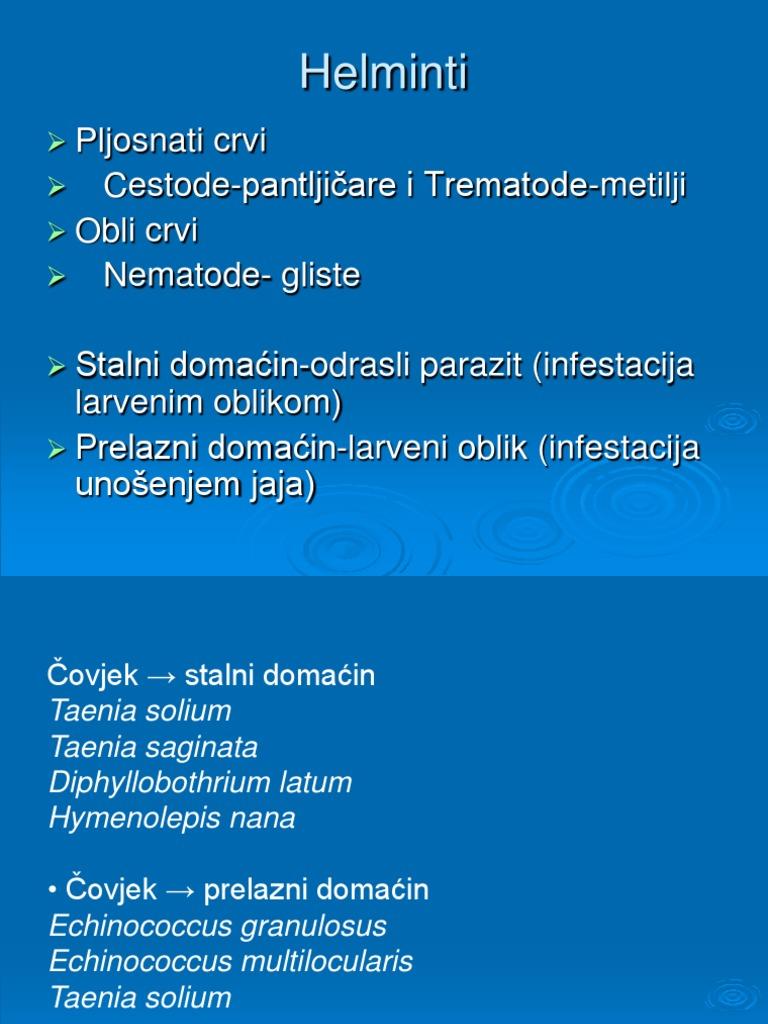endoparazitikus helminták)